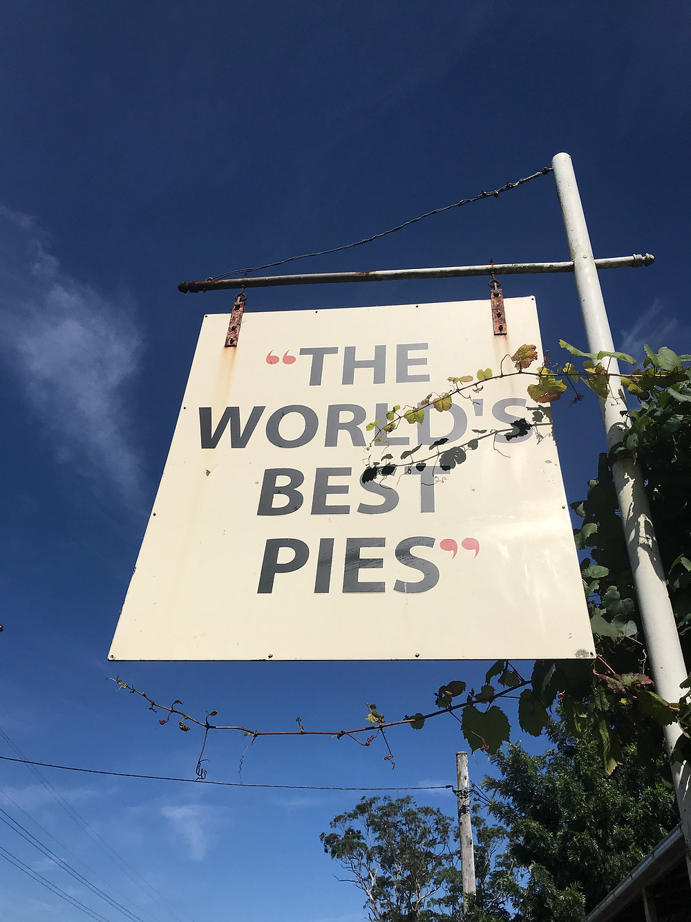 clovar-creative-kangaloon-southern-highlands-NSW-what-to-do-kangaroo-valley-worlds-best-pies-sign