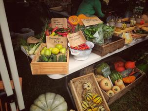 Kangaroo Valley Farmers Market