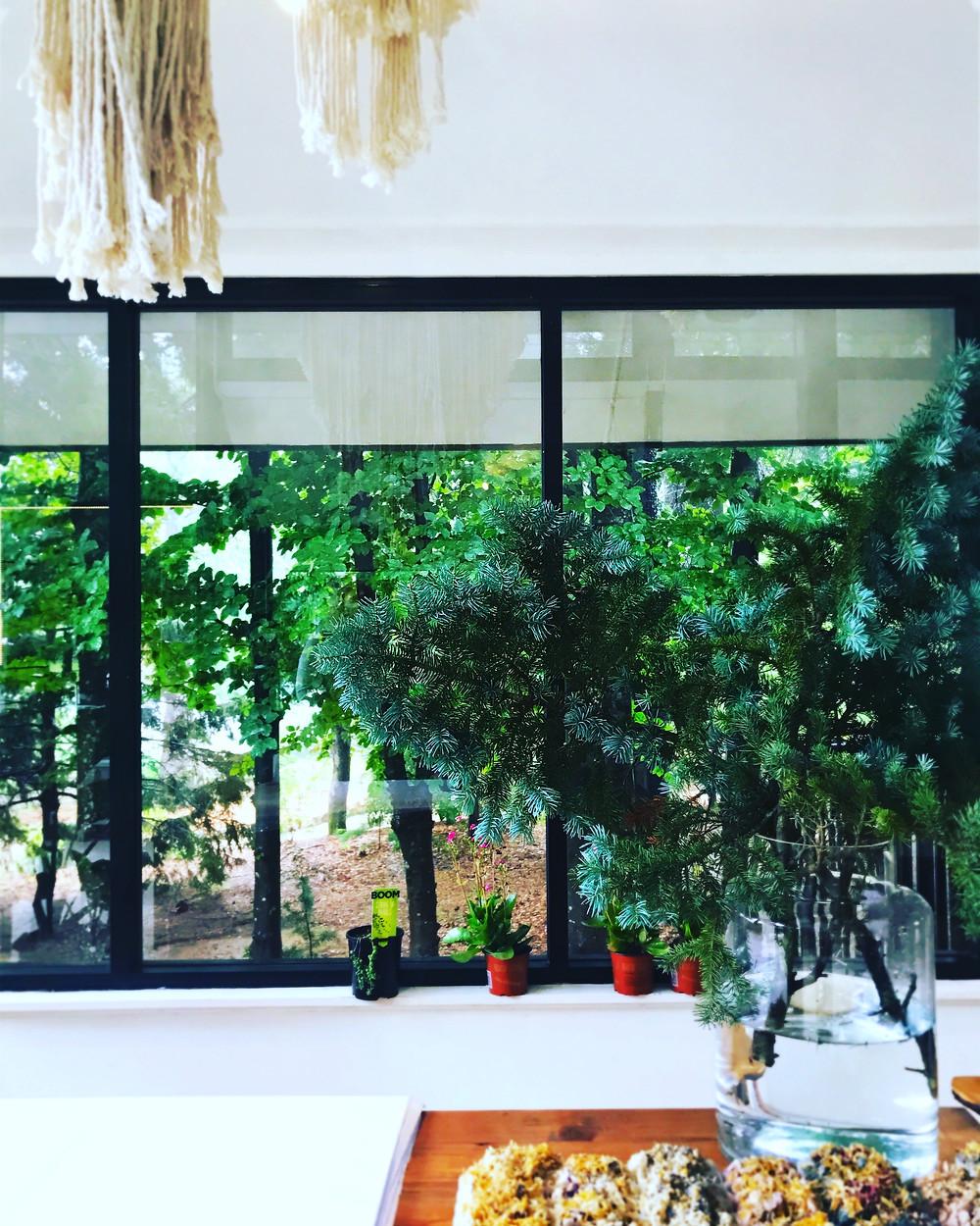Clovar-creative-sorensen-glasshouse-and-garden-leura-gifts
