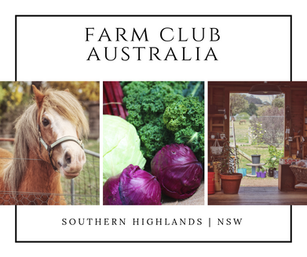 Farm Club Australia | Southern Highlands