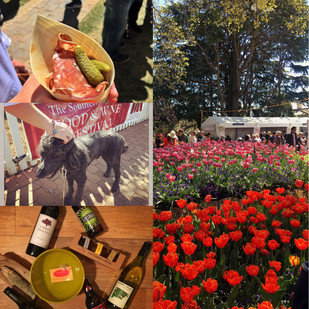 Southern Highlands Food and Wine Festival 2017