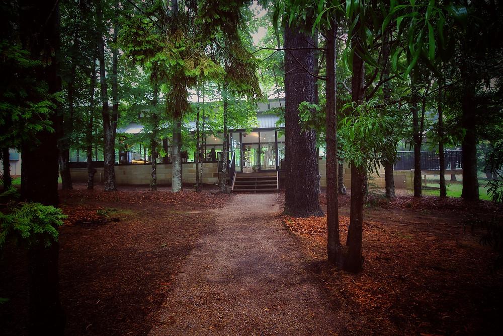 Clovar-creative-sorensen-glasshouse-and-garden-leura