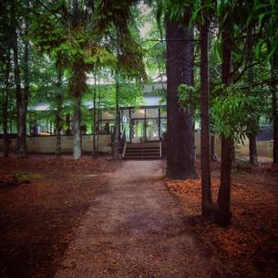 Sorensen's Glasshouse & Gardens | Leura | Blue Mountains | NSW