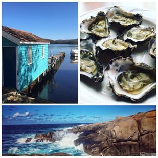Narooma- a seafood adventure