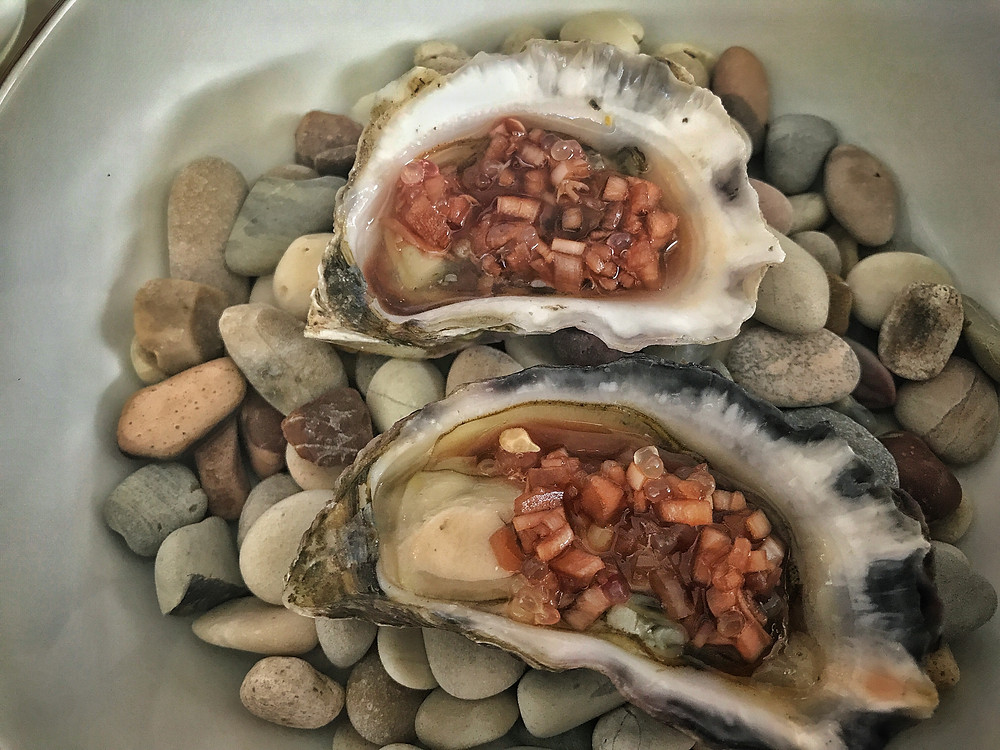 clover-creative-allan-grammar-penrith-review-wine-bar-sydney-rock-oysters