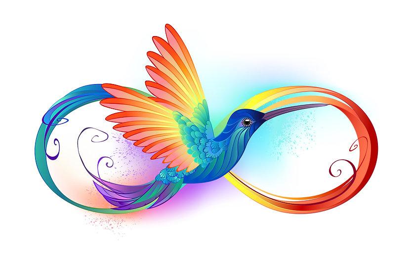 Rainbow bird in infinity symbol.jpeg