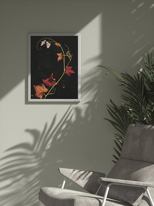 The October Spiral | Framed Poster