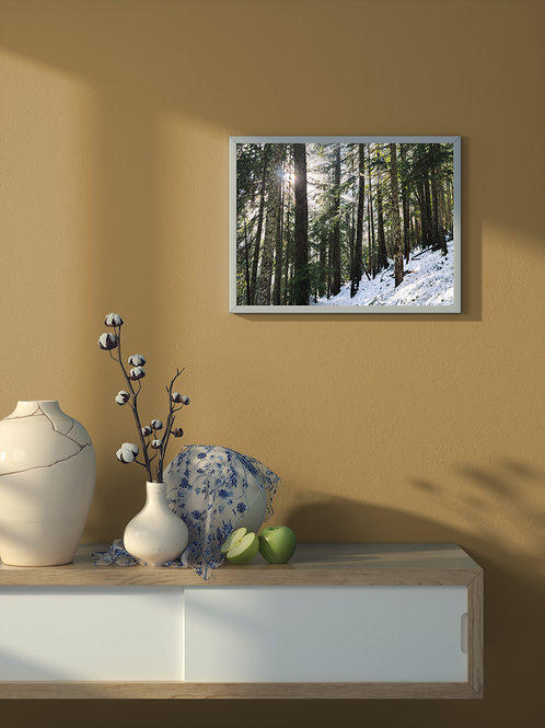 Morning Light | Framed Poster