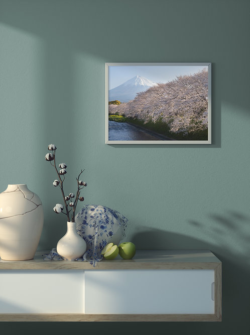 Cherry blossoms and Mt. Fuji. | Framed Poster