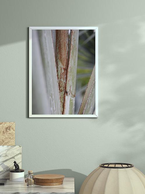 Labeless | Framed Poster