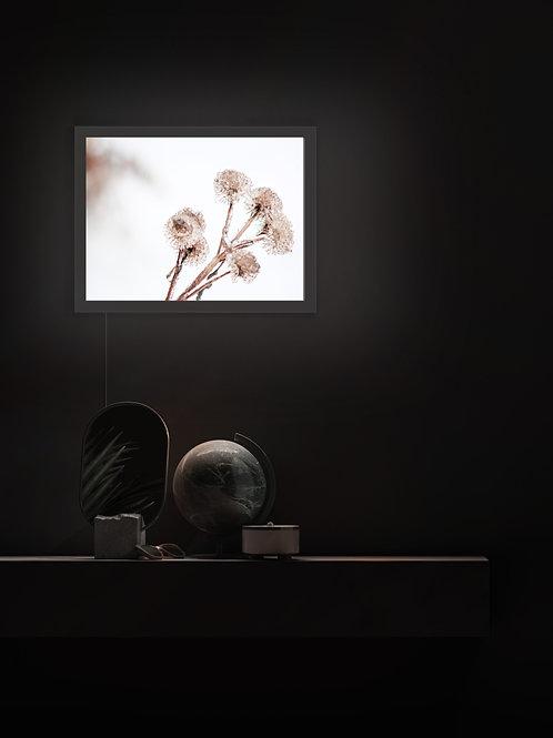 Winter Bouquet | Lightbox