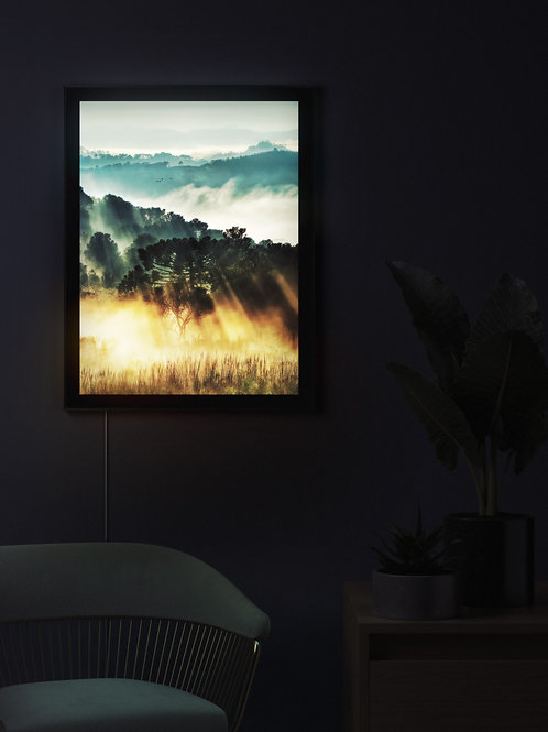 Morning Glow | Lightbox