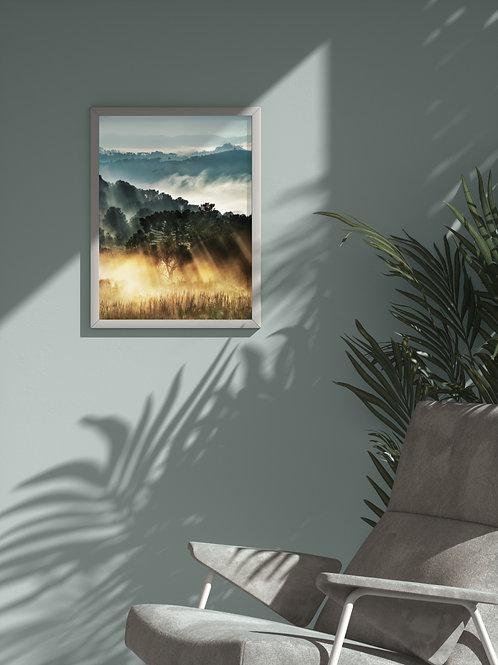 Morning Glow | Framed Poster