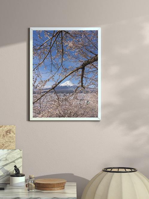 Frame Fuji | Framed Poster