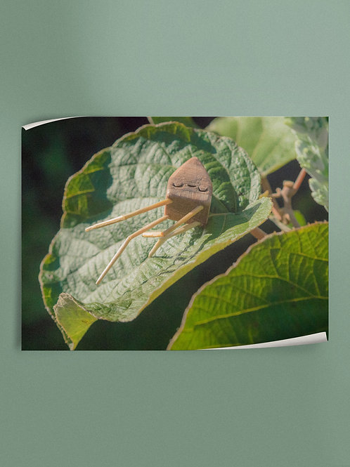 Zzzzz | Poster