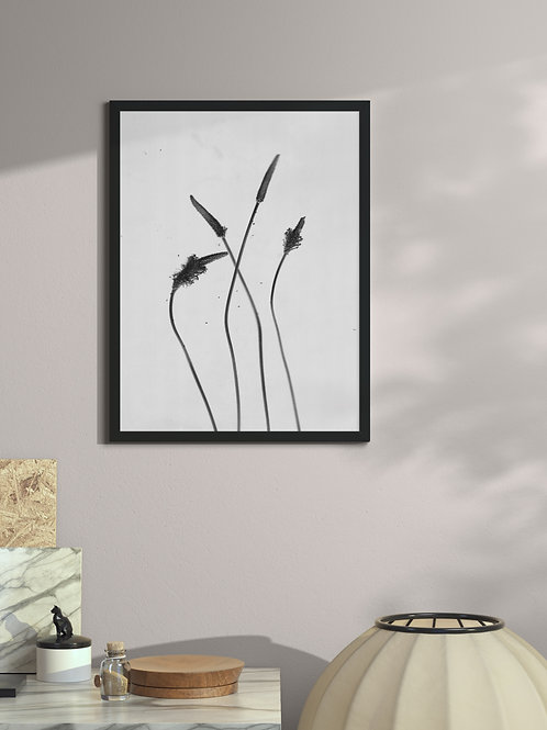 Silent lullabies of dusty herbs 2 | Framed Poster