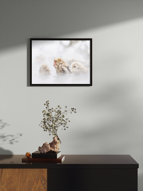 snow monkeys | Framed Poster