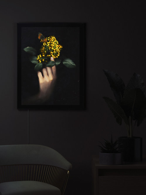 Mahonia | Lightbox