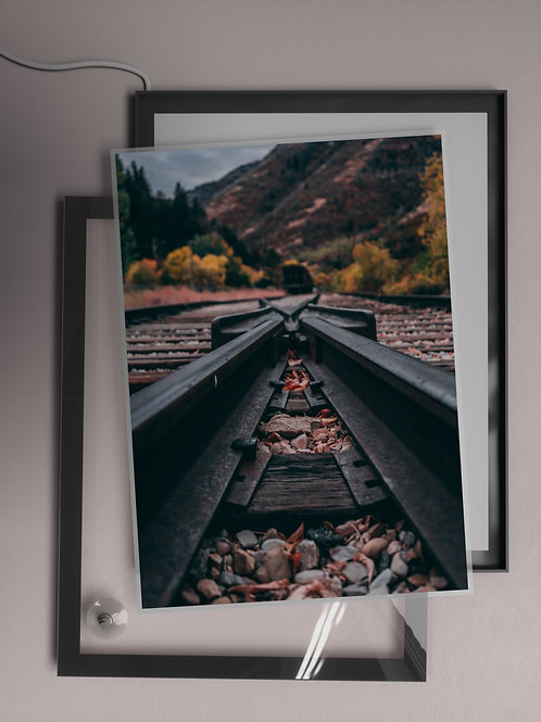 Crossed Paths | Film Insert