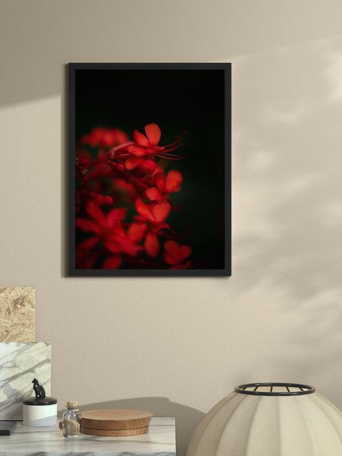 Red | Framed Poster