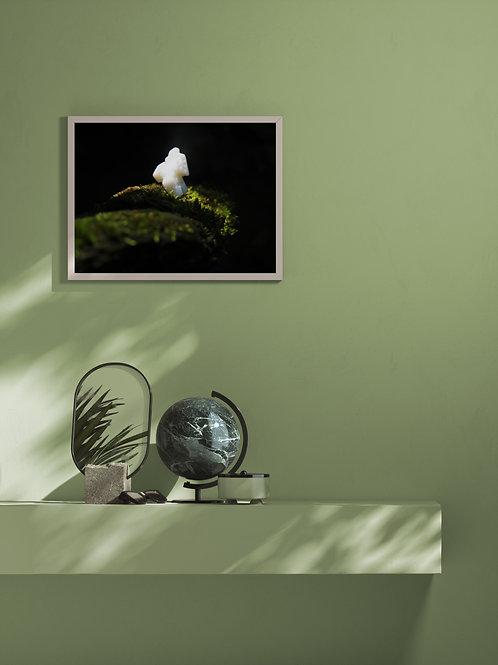 Coisas que se encontram | Framed Poster