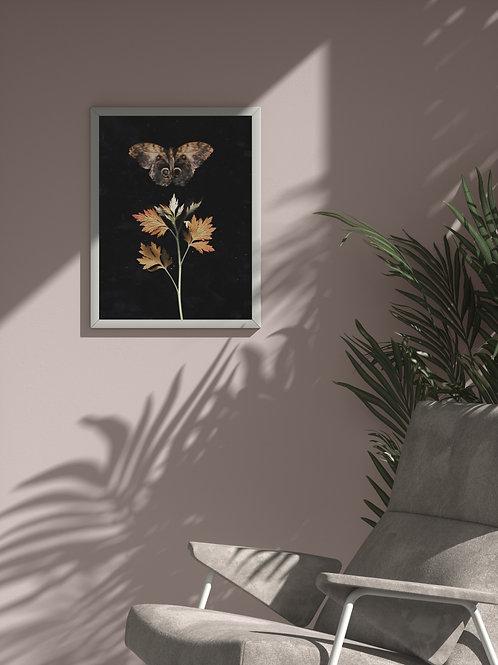 Fragile Autumn Wings | Framed Poster