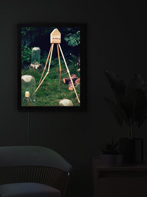 Garden | Lightbox