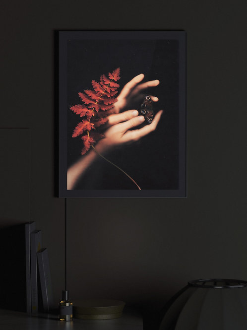 Sanguine natura | Lightbox