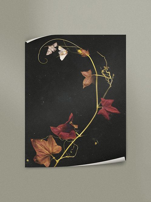 The October Spiral | Poster