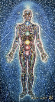 Alex_Grey-Psychic_Energy_Sy.jpg