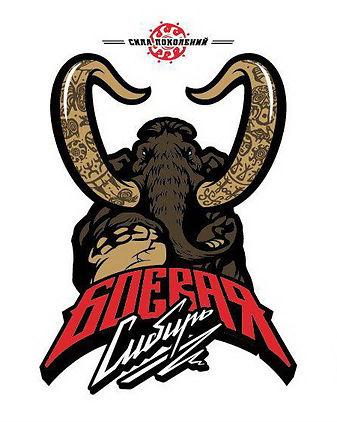 логотип_бс.jpg