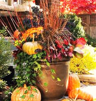 fall container.jpg 2015-9-3-21:28:23