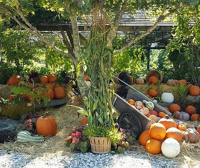 fall nursery 2.jpg