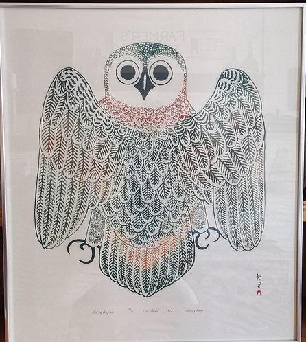 "Kananginak  Pootoogoook (1935 - 2010) ""Owl of Kingait"" Cape Dorset, 1973"