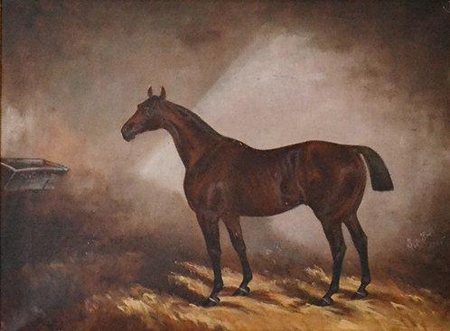 Thomas Seaton Scott (1826-1895) Queen's Plate runner 'Disturbance', 1885