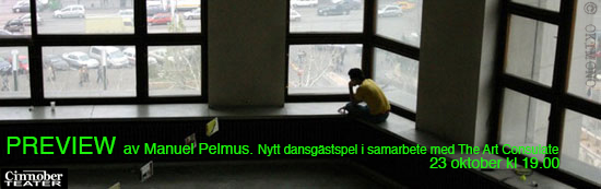 Preview-Pelmus poster.jpg