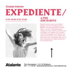 2016-10 Expediente