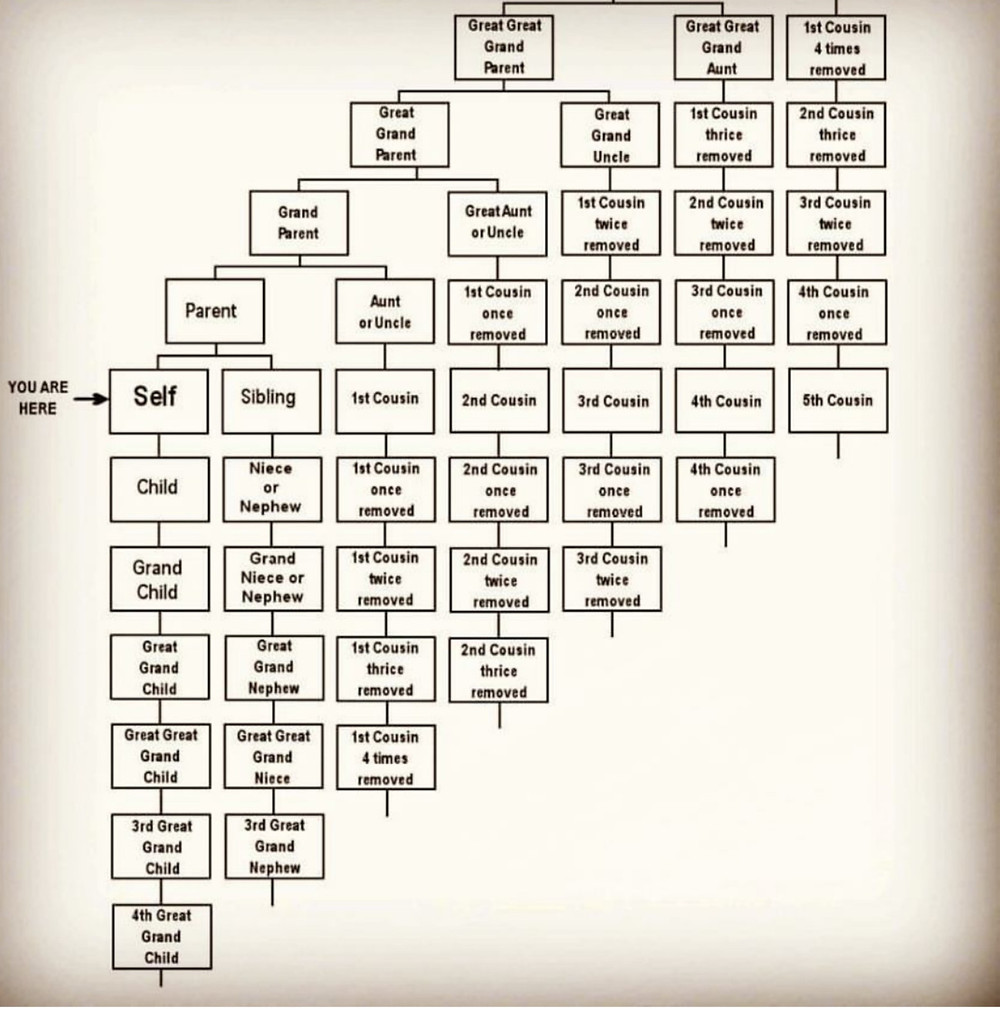 Family relationship chart, ancestry