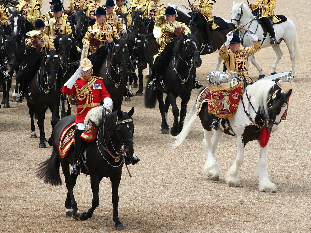 By Jon (Trooping the Colour, 16th June 2007) [CC BY 2.0  (https://creativecommons.org/licenses/by/2.0)], via Wikimedia Commons