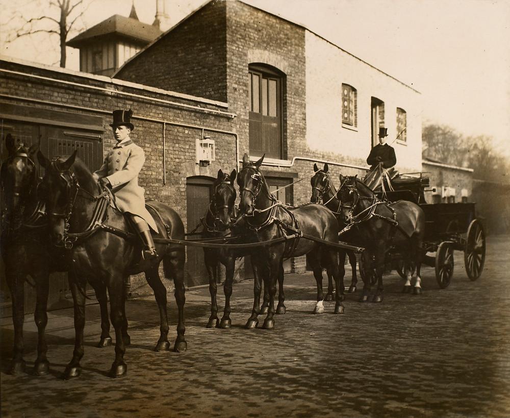 vintage image of horses and wagons, at the Royal Mews c.1903