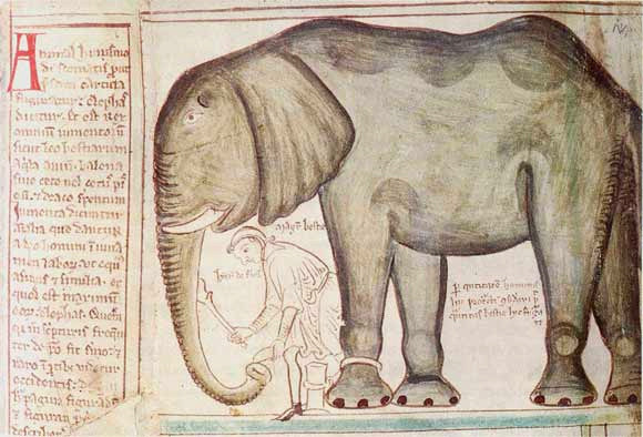 Henry's elephant, given to him by Louis IX of France, by Matthew Paris