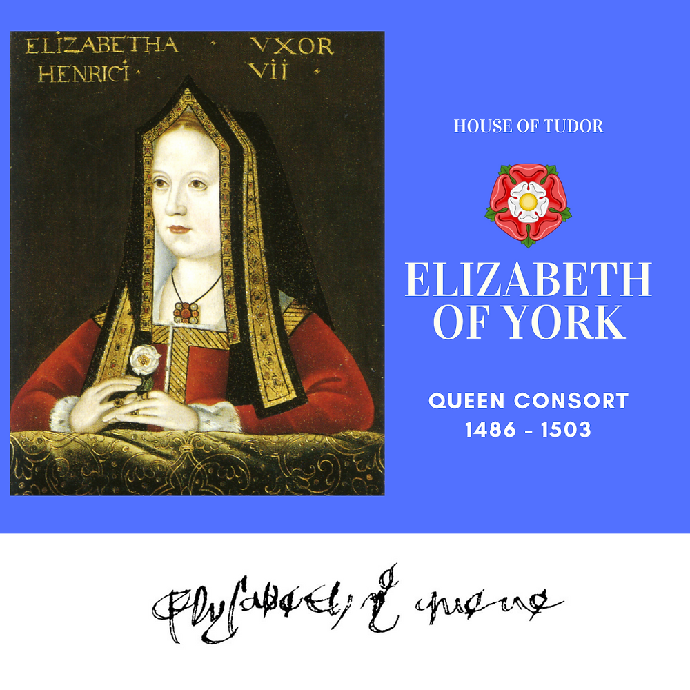 Elizabeth of York, Queen consort of England as the wife of king Henry VII