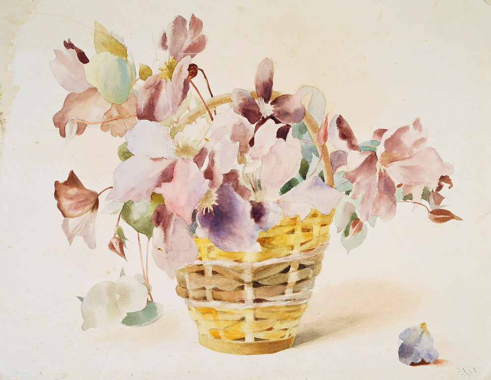 A basket of Clematis by Queen Alexandra. watercolour painting of a basket of flowers by Queen Alexandra of Great Britain.  Royal Collection Trust/(c) Her Majesty Queen Elizabeth II 2019