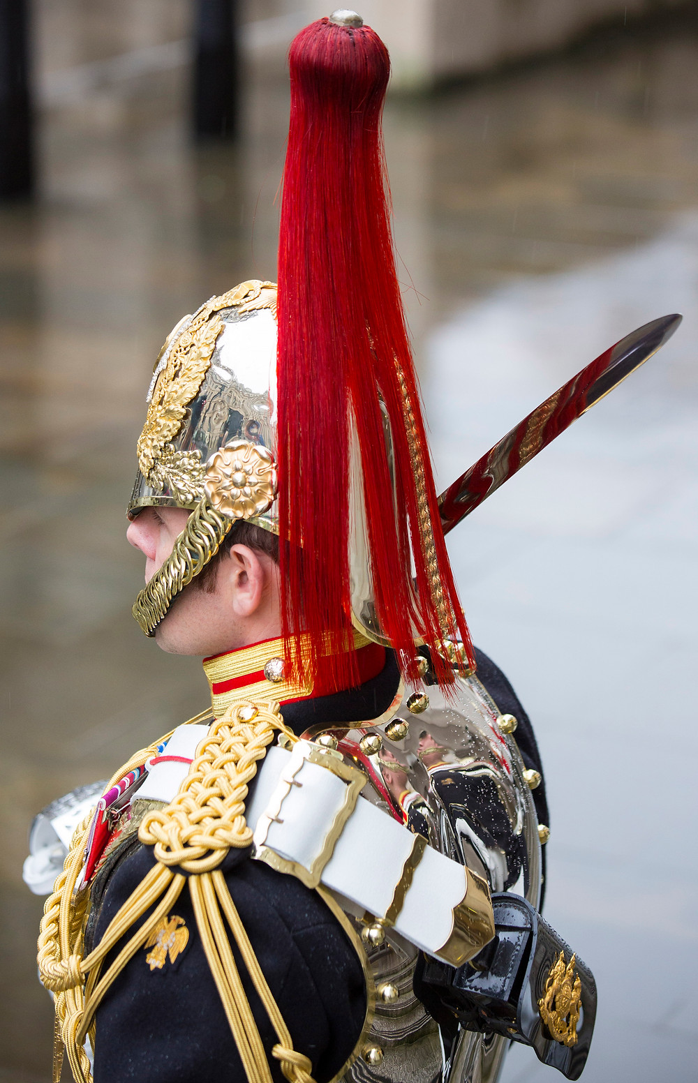 Soldier of the Household Cavalry