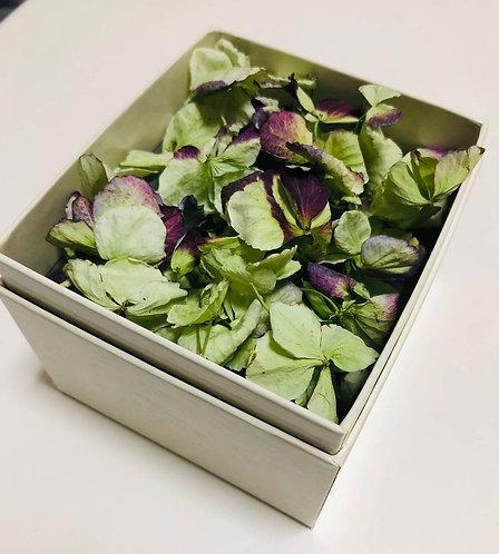 ドライフラワーBox紫陽花