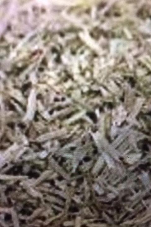 Organic Horsetail Herb