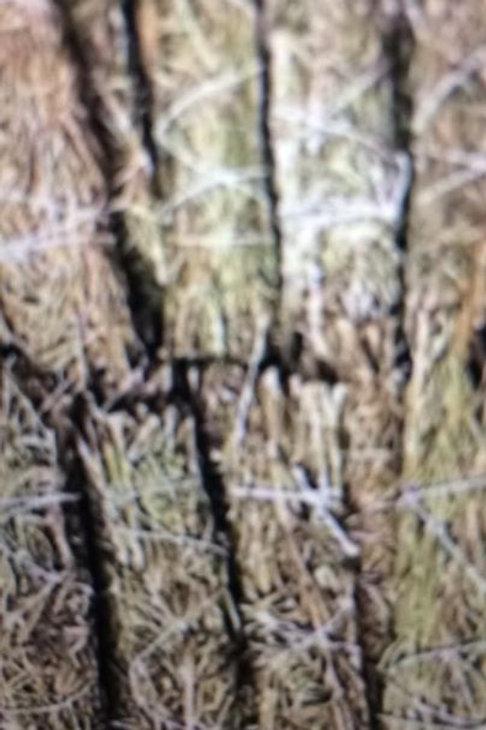 Rosemary Sage Smudge Sticks