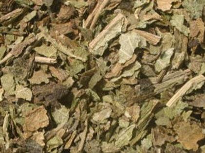 Organic Lobelia Herb