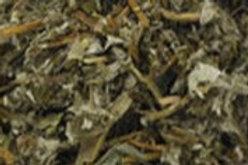 Organic Cinquefoil Herb