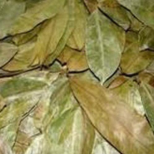 Organic Soursop Leaves